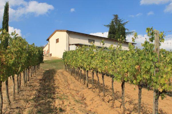 Winery Dionysus 5 Winery for Sale in Montepulciano, Siena