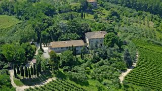 Winery for Sale in Pisa, Winery for sale in Tuscany, Luxury Real Estate Florence