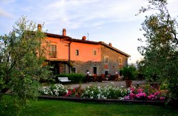 Farmhouse for sale near Arezzo