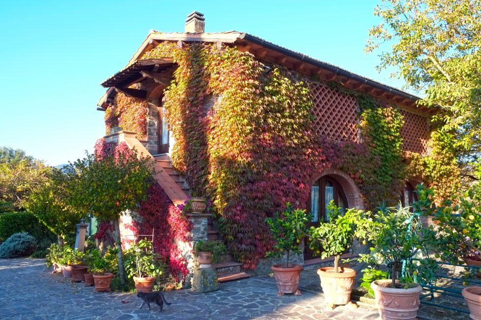 Villa with vineyards for sale in Chianti near Greve