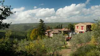 Winery for sale in Chianti,winery for sale in Tuscany,prestigious winery for sale in Italy,winery for sale in Panzano in Chianti,winery for sale close to Greve in Chianti