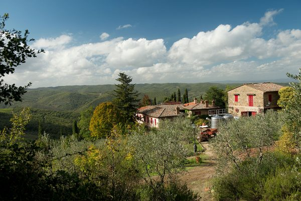 Historic-villa-and-vineyard-for-sale-close-to-Florence-54