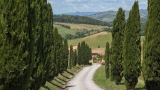 Farmhouse for sale in Tuscany,country villa for sale near Casole d'Elsa,prestigious property for sale in Tuscany,villa for sale near Volterra,luxury property for sale close to Siena and Pisa