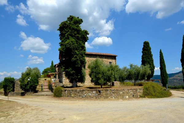 historic-borgo bed-and-breakfast-for-sale-in-chianti-28