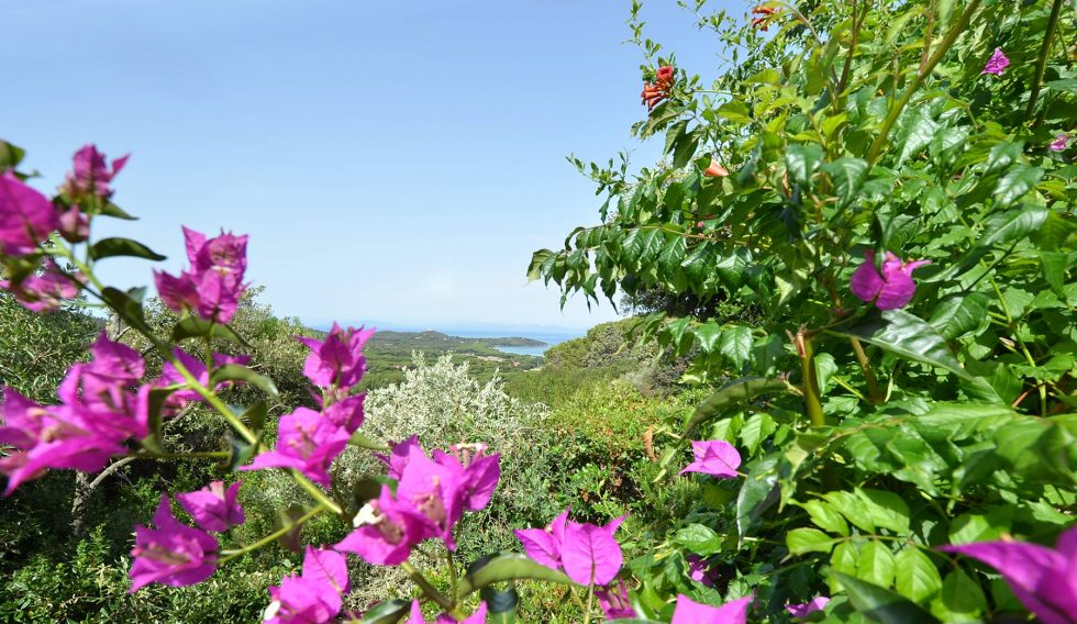 seaside-villa-for-sale-in-tuscany-14