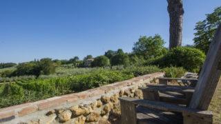 villa for sale near Montepulciano,villa with bio-pool for sale in Tuscany