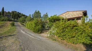 villa for sale near san gimignano,bed and breakfast for sale near San Gimignano